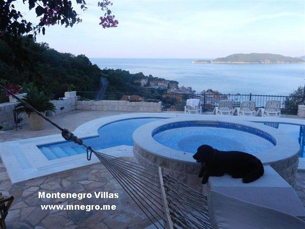 montenegro_pets_friendly